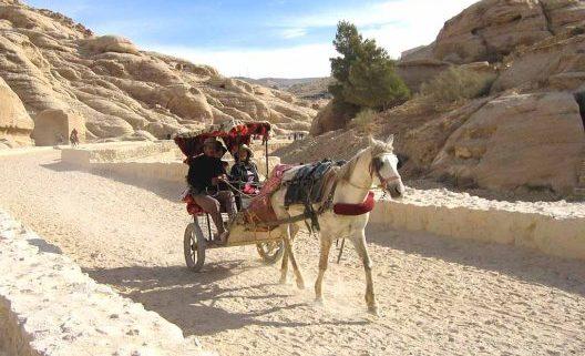 Transporte en Petra con caballos