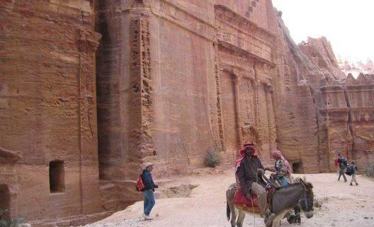 Burro y arqueologia en Petra